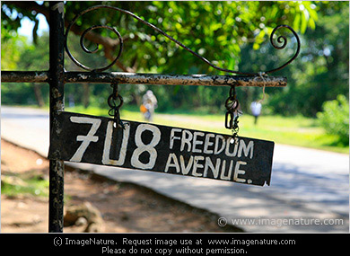 Road sign: 708 FREEDOM AVENUE