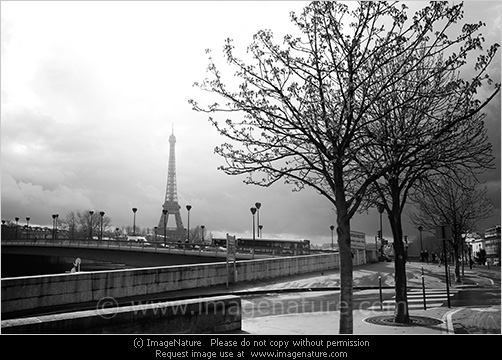 Paris street and bridge with eiffel tower on background at spring