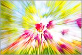 Colorful spring dynamic abstract image